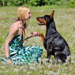 Az öt legfontosabb vezényszó a kutyanevelés során 1 150x150 - Az öt legfontosabb vezényszó a kutyanevelés során