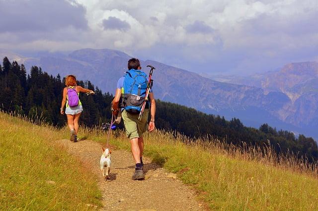 Kempingezés a kutyával
