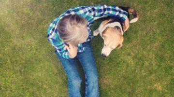 Hogyan találd meg az ideális kutyaszittert 360x201 - Hogyan találd meg az ideális kutyaszittert?