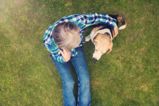 Hogyan találd meg az ideális kutyaszittert - Hogyan találd meg az ideális kutyaszittert?