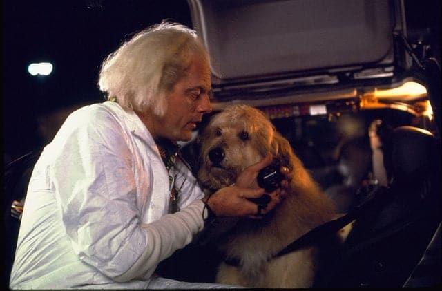 Einstein Vissza a jövőbe - A legkedveltebb kutyanevek filmekből, sorozatokból, rajzfilmekből